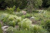 "Stipa Miscanthus ""Zebrinus"" Sedum and Valeriana France ; Garden : ""Jardin du fond de l'or"" Mr Lubet"