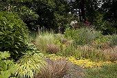 "Grasses garden Jardin du fond de l'or France ; Garden : ""Jardin du fond de l'or"" Mr Lubet"