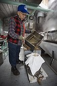 Man filtering maple syrup in the sugar shed Quebec Canada ; Locality: St Mathieu du Lac.