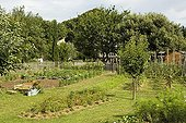 Overview of a kitchen garden in summer Provence