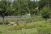 Overview of a kitchen garden in summer Provence France