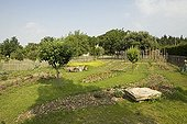 Overview of a kitchen garden in spring Provence