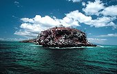 Volcanic formation in the Pacific Ocean Galapagos ; Site : Isla Mariela on the west coast of Isabela