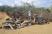 Mailbox of the Post on Floréana island Galapagos ; Tourists deposit postcards to the world.