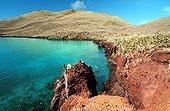Bay of Rabida Island Galapagos