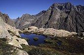Mountain lake in summer Champsaur Hautes-Alpes France ; Locality: Champoléon.