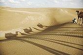 Camel shadows on sand India