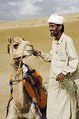 Camel being fed by his owner Rajasthan India
