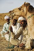 Owners sitting in front of their camels Rajasthan India