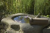 Bird bath at Jardin du fond de l'or