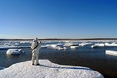 Man looking at the ice in the Bay of Goodsir Inlet