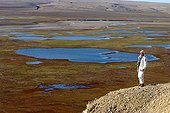 Man seeking the presence of musk oxes Arctic ; He overlooks the Polar Bear Pass.<br>