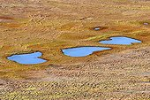 Rosary of small lakes drying Canadian Arctic ; <br><br>
