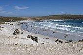 Baie de sable sur Pebble Island Iles Malouines