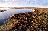 Little lake on Bathurst island Canada