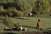 Woman Berber and his flock grazing in a valley