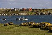 Darwin locality in East Falkland Falkland Islands