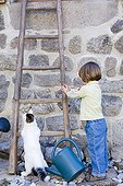 Girl helping a kitten 4 months to climb atladder France ; Age : 2 years