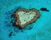 Heart-shaped coral reef Australia