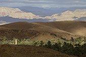 Palmeraie et montagnes colorées dans la Vallée des roses