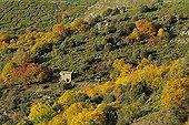 Cévennes landscape in autumn Ardèche France