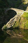 "Old stone bridge on the river Ardèche France ; The ""Devil's Bridge"""