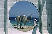Bedouin with his camels on the beach Egypt