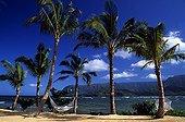 Hammocks on a tropical beach of Kauai island Hawaii