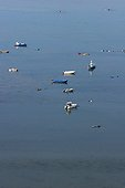 Clam fishermen and their boats Morbihan France
