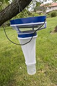 Trap to catch the midges Culicoides ; These flies are vectors of bluetongue