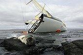 Antarctic Fur Seal and boat failed Kerguelen Islands TAAF ; Race : Vendée Globe<br/>Skipper : Bernard Stamm<br/>Boat : Absolut Dreamer ; Cheminées Poujoulat <br/>Length : 18.28 m <br/>Mast height : 28.20 m