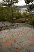 Rupestral carvings from the Stone Age Hjemmeluft Norway
