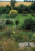 Lavatère Onagre et Graminées dans un jardin sauvage l'été ; Créateurs : Catherine Willis et Alain Richert