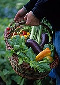 A person wearing a basket of vegetables from the garden