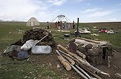 Nomads reassembling a yurt after a storm Kyrgyzstan ; In the foreground the fuel for the fire and the household.