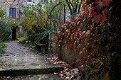 City Park in autumn Tarn France