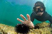 Apneiste pretending to touch a sea urchin Mediterranean Sea