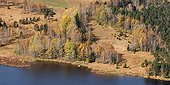 Bank of the Lac des Mortes in autumn Jura France