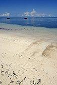 Tropical beach on the island of Praslin Seychelles