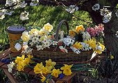 Bouquets on a garden table in spring