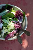 Mixed green salad in a bowl