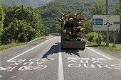 Pro & anti bear graffitis on the RN125 road Pyrénées France
