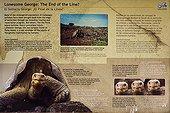 Histoire de Lonesome Georges Santa Cruz Iles Galapogos ; Lonesome George est le nom donné à la dernière tortue connue de la sous-espèce Geochelone nigra abingdoni, une des 11 sous-espèces indigène de tortue des Îles Galápagos