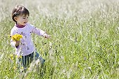 Young girl and bunch of dandelion in a meadow Provence ; Age: 3 years