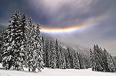 Lunar Halo and stratus in a snowy forest Alpes France