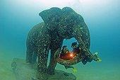 Stone Elephant and Diver, Phuket, Andaman Sea, Thailand