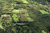 Cultures won on high elevation forests Ecuador