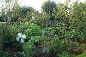 Vegetable garden in The Garden of Marie-Ange in Croisette ; Aeolian of garden