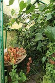 """Exuberance and exoticism in the Garden of Marie-Ange France ; """"Greenhouse of Jocelyne"""""""
