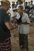 Combat de Coqs dans l'île de Bali en Indonésie ; Les combats de coqs, interdits en Indonésie, profitent d'une tolérance sur<br>l'île de Bali. Le combat (tetadjen ou sabungan) a lieu dans une arène carrée<br>de 6 mètres de coté, dans un programme composé de 9 ou 10 matches (sehet). Une<br>dizaine d'hommes pénètrent dans l'arène. Chacun portant un coq et recherchant<br>un adversaire idéal. On attache à chaque coq son éperon (tadji) de 10 à 12 cm.<br>Leur fixation requiert un savoir faire particulier, celui des éperonniers peu<br>nombreux. Les combats sont régis par des règles minutieuses et ancestrales. Une fois un coup décisif porté, les coqs sont séparés.